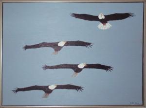 Fire amerikanske ørne (hvidhovedet ørn), 2016, 60 x 80 cm, olie, 3500 kr.